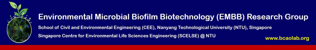 Environmental Microbial Biofilm Biotechnology (EMBB)